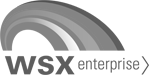 The fast lane to a new business system for WSX Enterprise