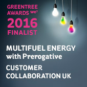 Greentree Customer CollaborationUK FInalist 2016 for Multifuel Energy